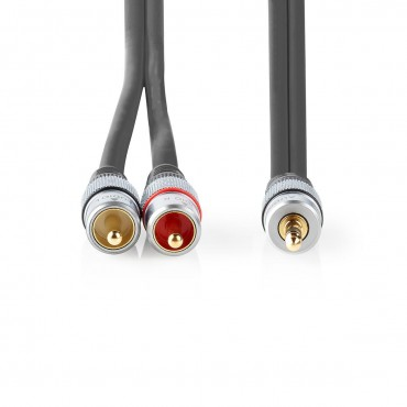 CAGC22200AT: Stereo Audio Cable | 3.5mm Male - 2x RCA Male | Anthracite