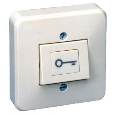 "PB1010 : Push button abs NO+NC with ""key"" symbol screw terminals"